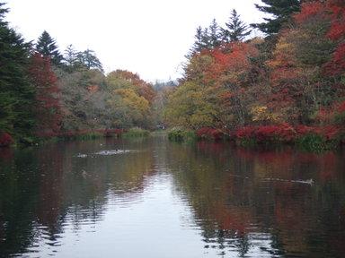 2008_1026karuizawa0251